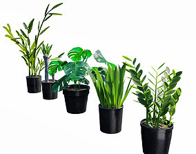 3D PBR Plants set vol 1
