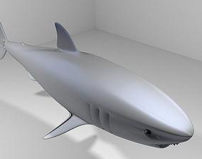 3D Shark - Great White