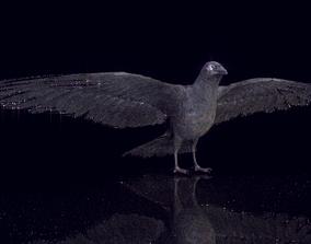3D model Raven