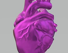 3D printable model anatomical-heart