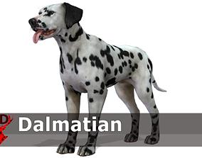 3D asset Dog - Dalmatian