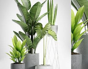 planters 3D model PLANTS 155