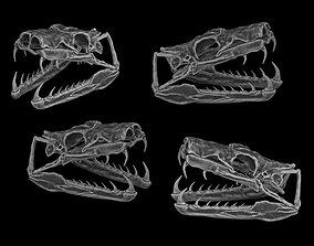Skull of snakes 3D printable model