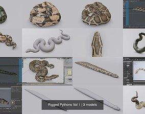 3D model Rigged Pythons Vol 1