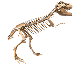 prehistoric 3D model T-rex Skeleton