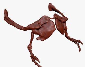 TRex Arm Set Skeletons 3D