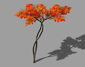 3D Forest - Red Tree 04