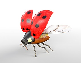 Ladybug Rigged 3D asset low-poly
