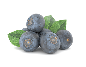 low-poly Blueberry Fruit 3D model Photoscan