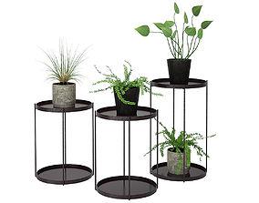 flora Plant 02 3D