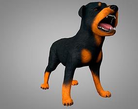 3D asset Dog Rottweiler