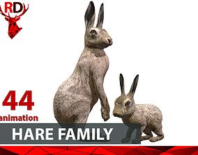 HARE FAMILY 3D asset