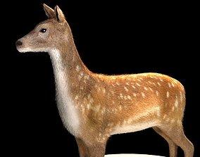 game-ready Deer 3d model