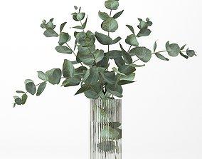 3D model Bouquet of eucalyptus branches bouquet