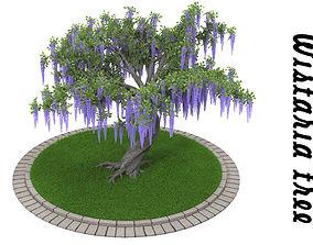 3D model Wistaria tree