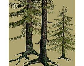 3D model 3 Fir Trees Low Poly