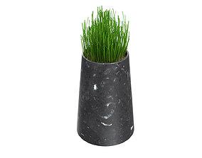 3D model Plant Pots