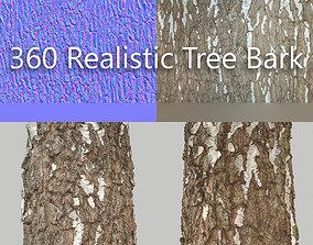 360 Tree Bark 1 3D model