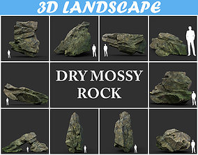3D model Low poly Dry Mossy Rock Formation Pack 200209