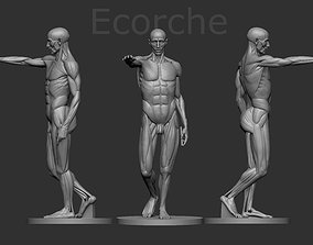 Ecorche Houdon 3D printable model