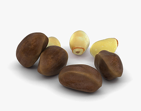 3D Pine Nuts