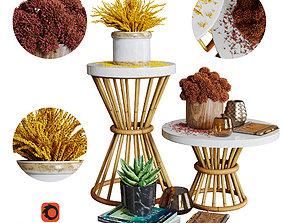 3D model Aloysia Rattan decorative set