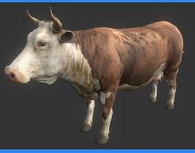 VR / AR ready COW 3D MODEL
