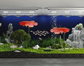 Arowana aquarium 3D