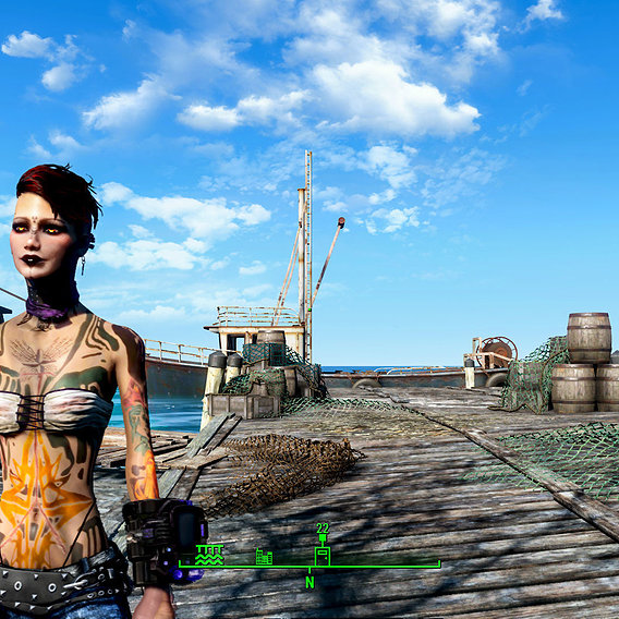 Vilanelle,my Fallout 4 character