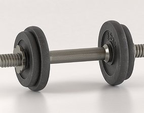 Metal Dumbell iron 3D model
