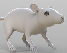 Realistic Rat small 3D model