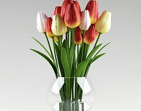 3D Ornamental plant 14 multicolors tulips