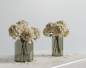 Dried hydrangeas set vaseset 3D