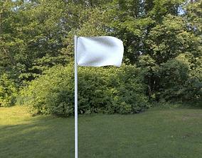 Waving Flag 3D