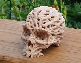 Root Skull 3D print model art