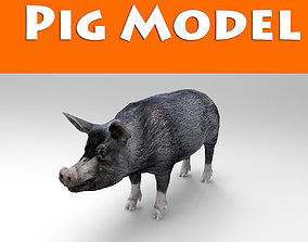 realtime 3D Black Wild Pig game ready low poly
