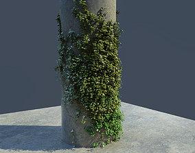 ivy scene 3D