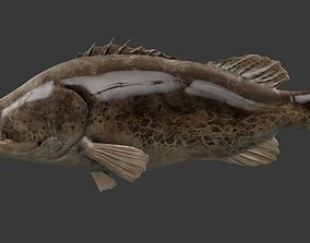 mandarin fish 3D model low-poly