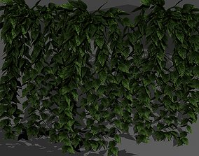 forest plant 3D model