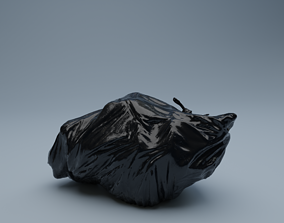 3D model Trashbag - Medium 2