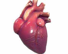 3D asset low-poly Human Heart