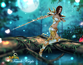 animated 3Dfoin - Female Royal Knight