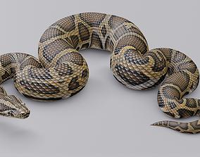 Animated Burmese Python 3D asset