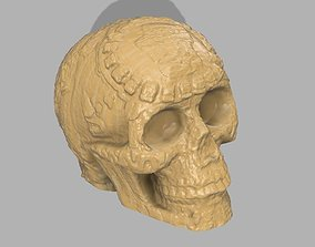 scans 3D print model Aztec Skull