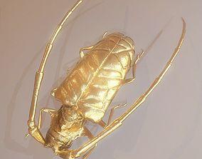3D model Golden Citrus Long Horned Beetle
