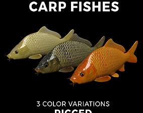 Carp fish 3D model animated