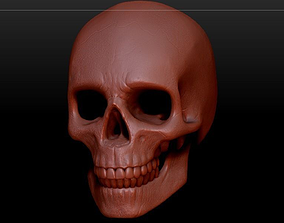 Realistic SKULL ultra detail 3D model