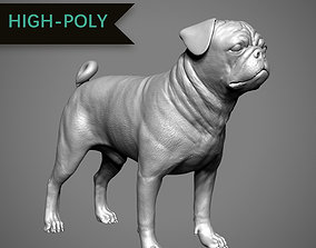 Pug High-Poly 3D print model
