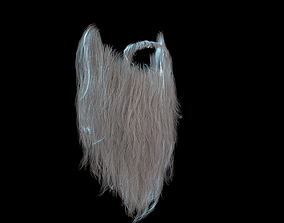 3D model Long Beard Low Poly