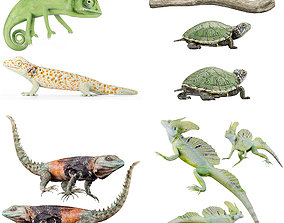 3D asset Reptile set